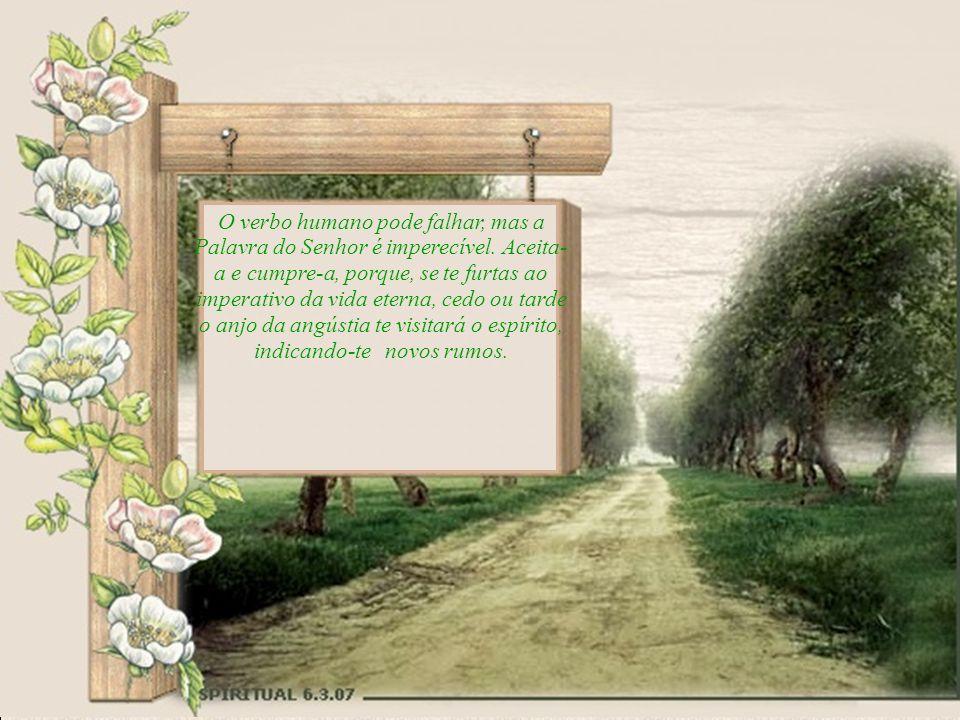 Se o terreno de teu coração vive ocupado por ervas daninhas e se já recebeste o princípio celeste, cultiva-o, com devotamento, abrigando-o nas leiras