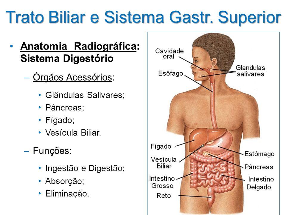 Trato Biliar e Sistema Gastr. Superior Anatomia Radiográfica: Sistema Digestório –Órgãos Acessórios: Glândulas Salivares; Pâncreas; Fígado; Vesícula B