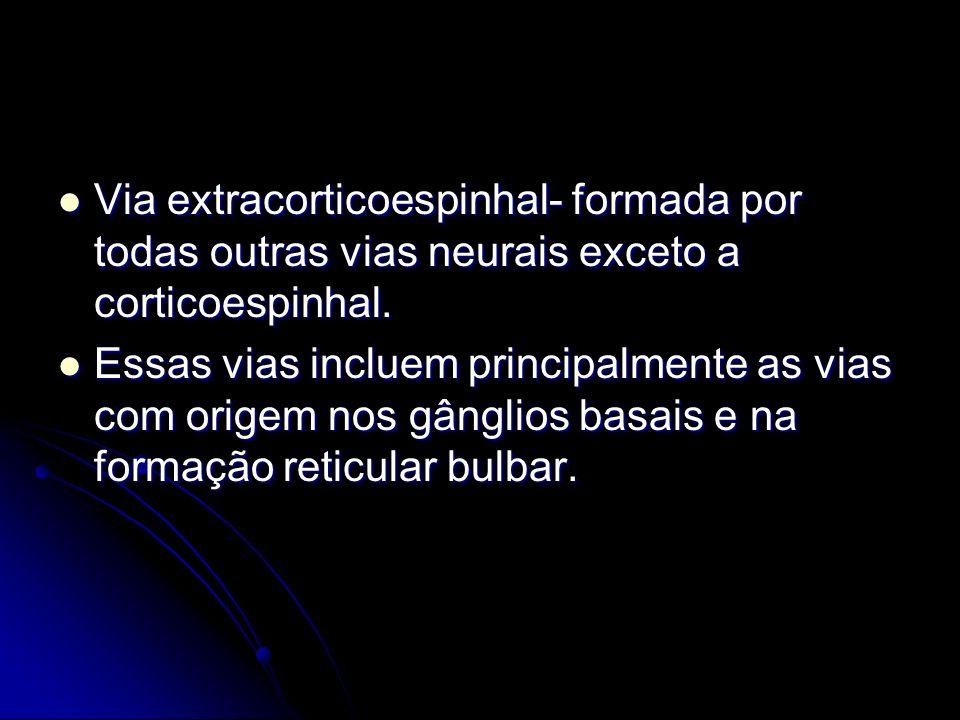 Via extracorticoespinhal- formada por todas outras vias neurais exceto a corticoespinhal. Via extracorticoespinhal- formada por todas outras vias neur