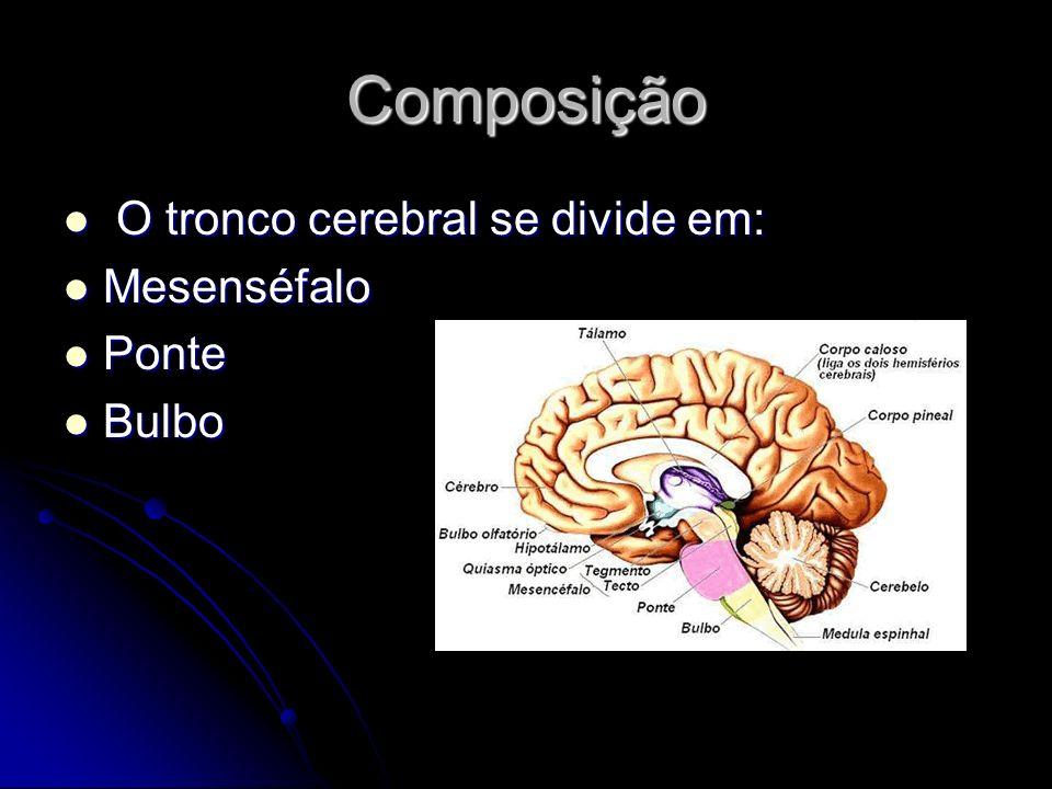 Principais feixes de fibras que transmitem as informações para o cerebelo feixes espinocerebelares- informações proprioceptivas com origem do corpo.