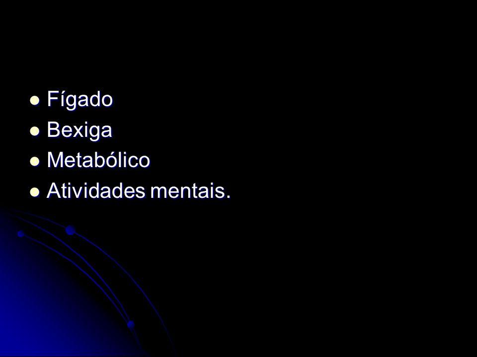 Fígado Fígado Bexiga Bexiga Metabólico Metabólico Atividades mentais. Atividades mentais.