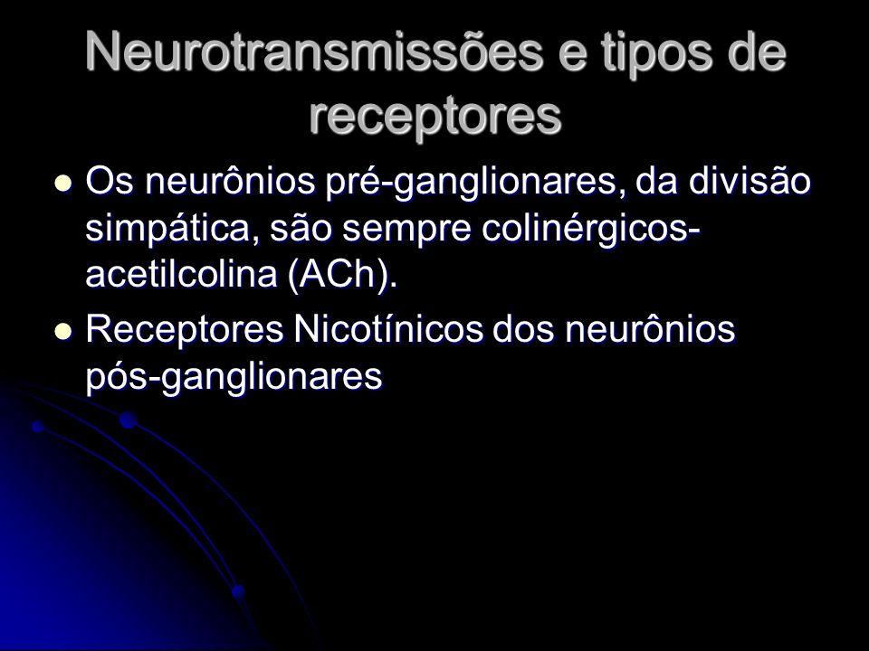 Neurotransmissões e tipos de receptores Os neurônios pré-ganglionares, da divisão simpática, são sempre colinérgicos- acetilcolina (ACh). Os neurônios