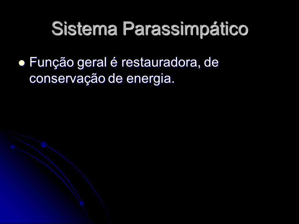 Sistema Parassimpático Função geral é restauradora, de conservação de energia. Função geral é restauradora, de conservação de energia.