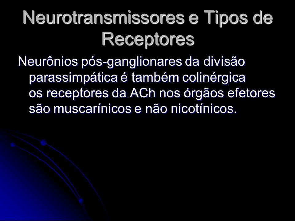 Neurotransmissores e Tipos de Receptores Neurônios pós-ganglionares da divisão parassimpática é também colinérgica os receptores da ACh nos órgãos efe
