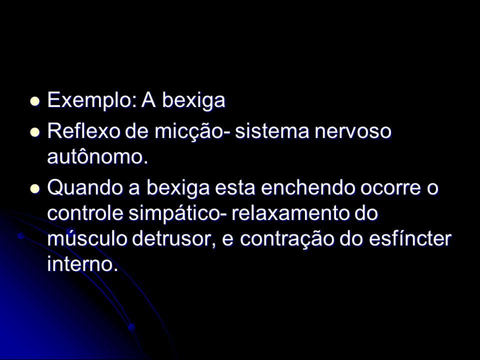 Exemplo: A bexiga Exemplo: A bexiga Reflexo de micção- sistema nervoso autônomo. Reflexo de micção- sistema nervoso autônomo. Quando a bexiga esta enc