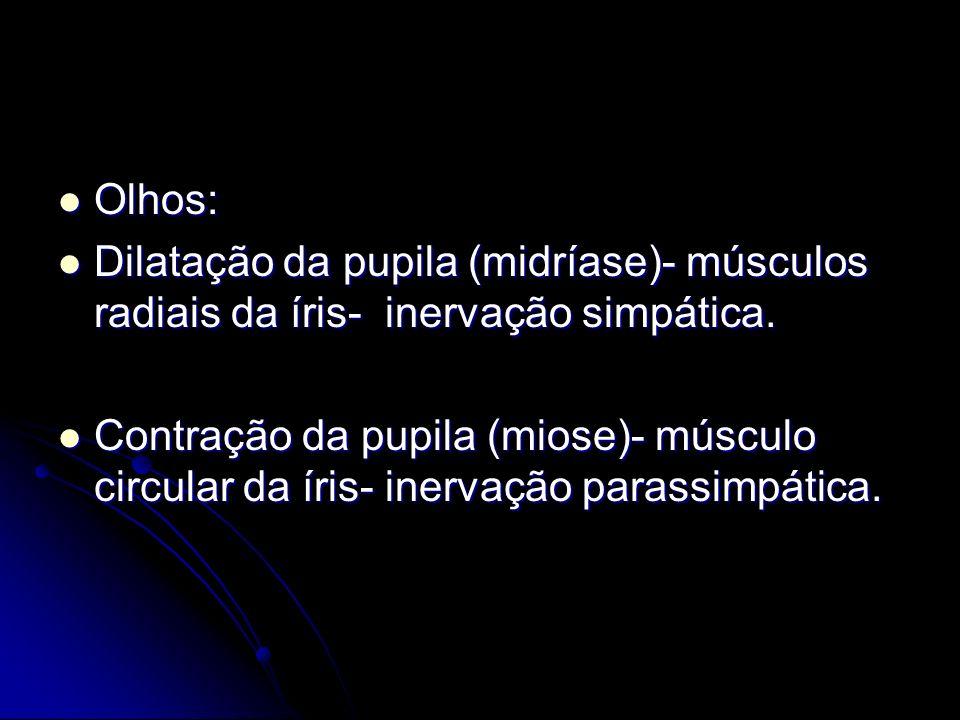 Olhos: Olhos: Dilatação da pupila (midríase)- músculos radiais da íris- inervação simpática. Dilatação da pupila (midríase)- músculos radiais da íris-