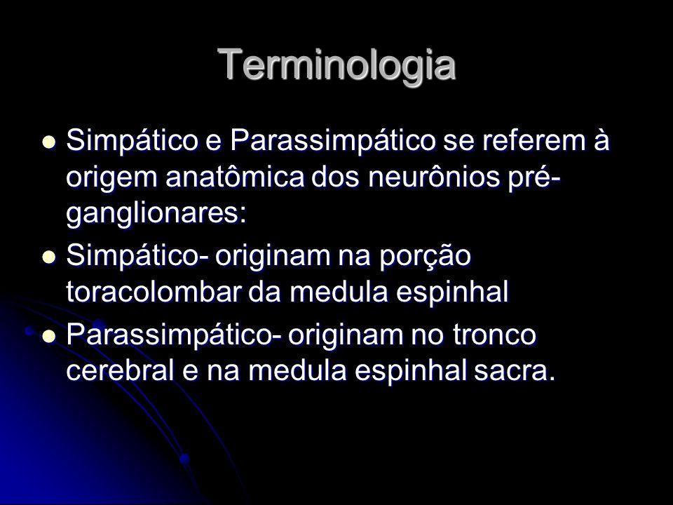 Terminologia Simpático e Parassimpático se referem à origem anatômica dos neurônios pré- ganglionares: Simpático e Parassimpático se referem à origem