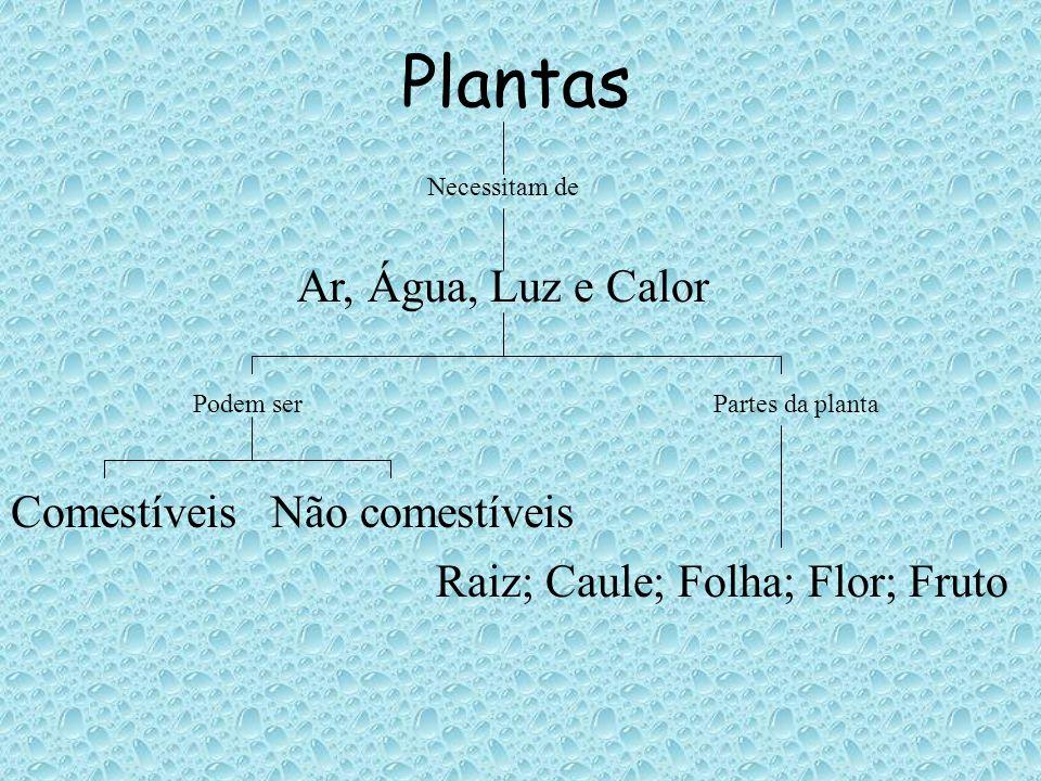 Plantas Necessitam de Ar, Água, Luz e Calor Podem ser ComestíveisNão comestíveis Partes da planta Raiz; Caule; Folha; Flor; Fruto