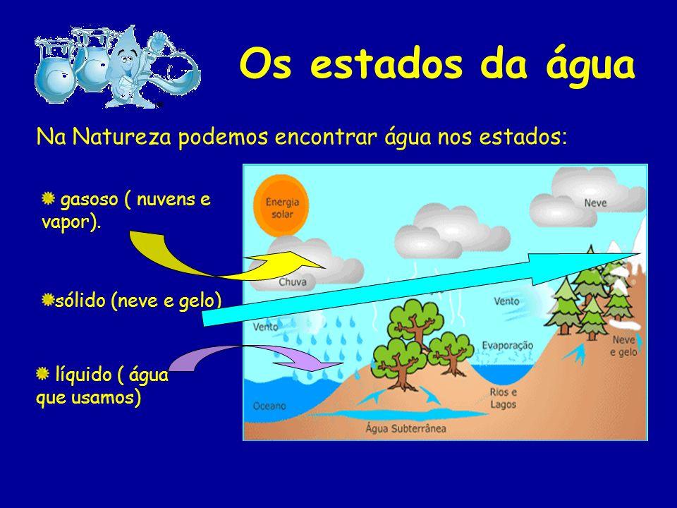 A água doce do Planeta Terra não se encontra toda disponível. A maior parte encontra- se, no estado sólido, nos polos e icebergs. E uma pequena parte