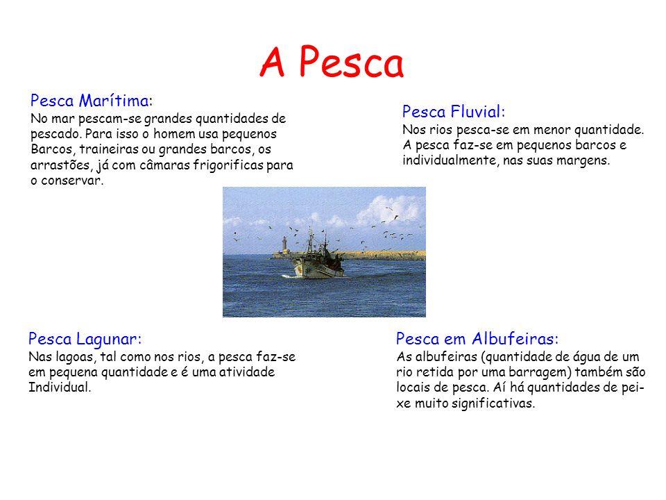 A Pesca Pesca Marítima: No mar pescam-se grandes quantidades de pescado. Para isso o homem usa pequenos Barcos, traineiras ou grandes barcos, os arras