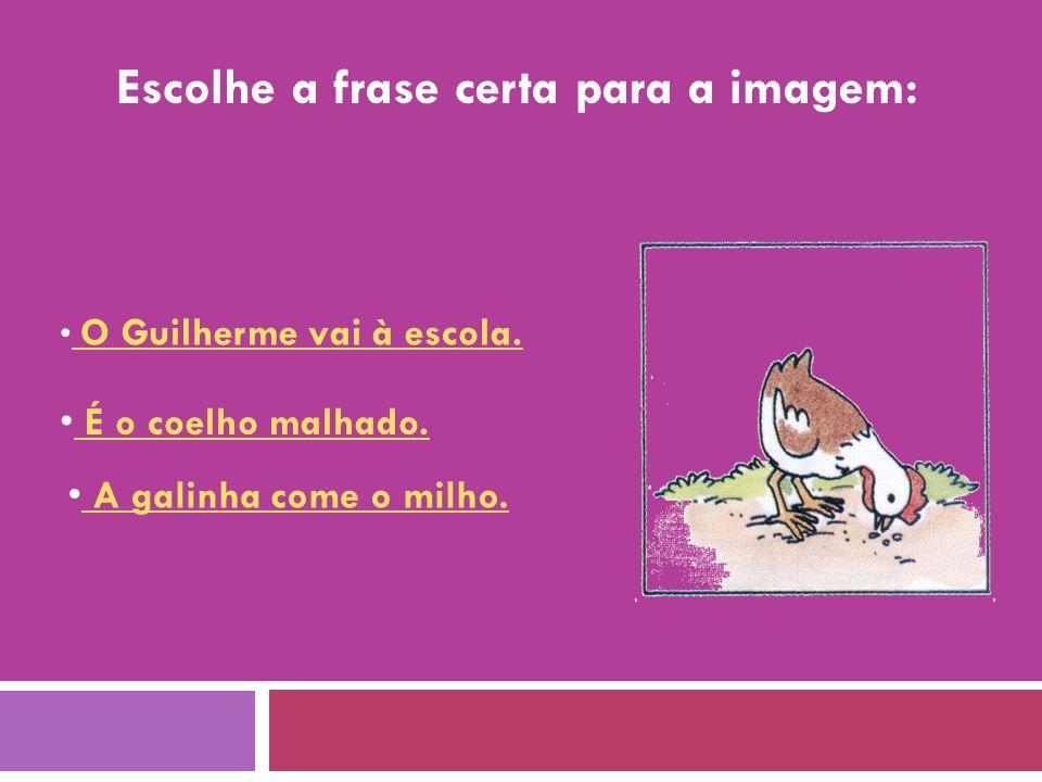 Escolhe a frase certa para a imagem: O Guilherme vai à escola.
