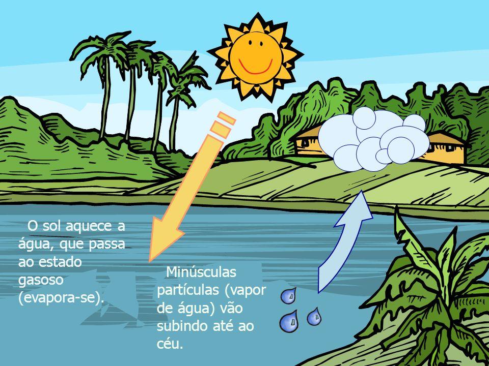 O sol aquece a água, que passa ao estado gasoso (evapora-se).