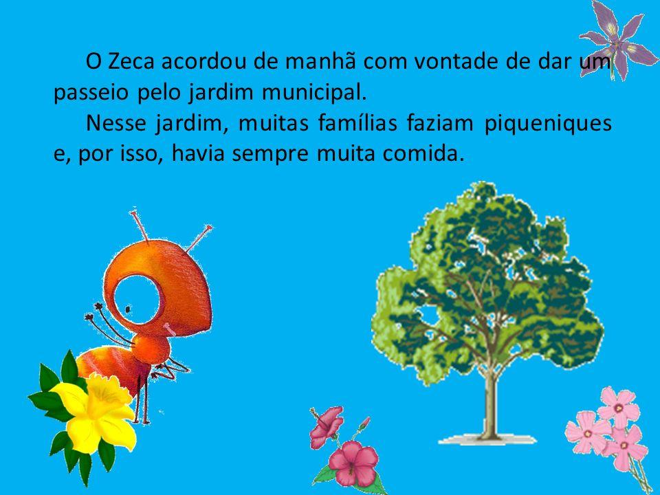 O Zeca acordou de manhã com vontade de dar um passeio pelo jardim municipal. Nesse jardim, muitas famílias faziam piqueniques e, por isso, havia sempr