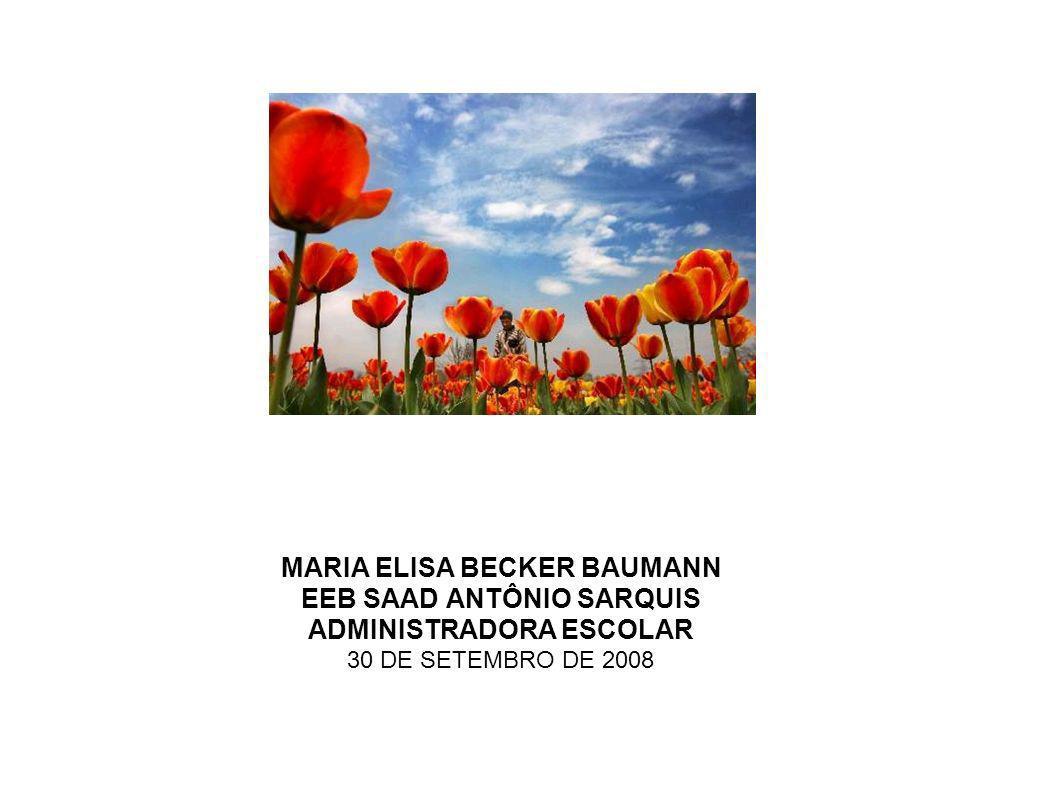 MARIA ELISA BECKER BAUMANN EEB SAAD ANTÔNIO SARQUIS ADMINISTRADORA ESCOLAR 30 DE SETEMBRO DE 2008