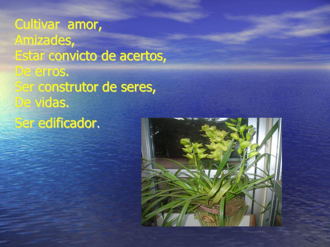 Cultivar amor, Amizades, Estar convicto de acertos, De erros. Ser construtor de seres, De vidas. Ser edificador.