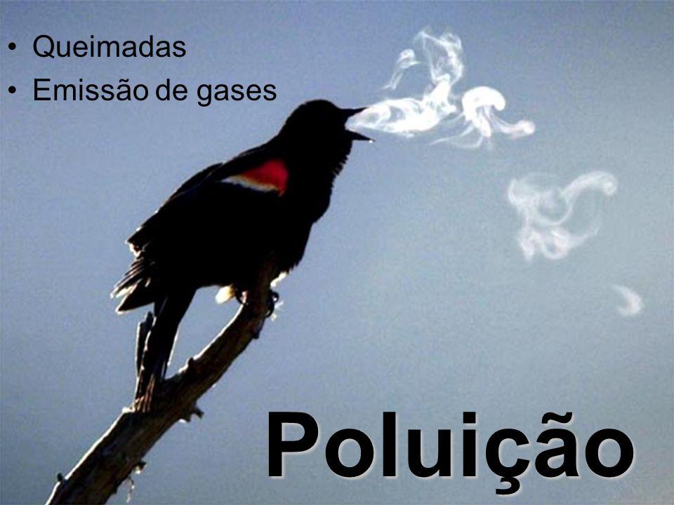 Poluição Queimadas Emissão de gases