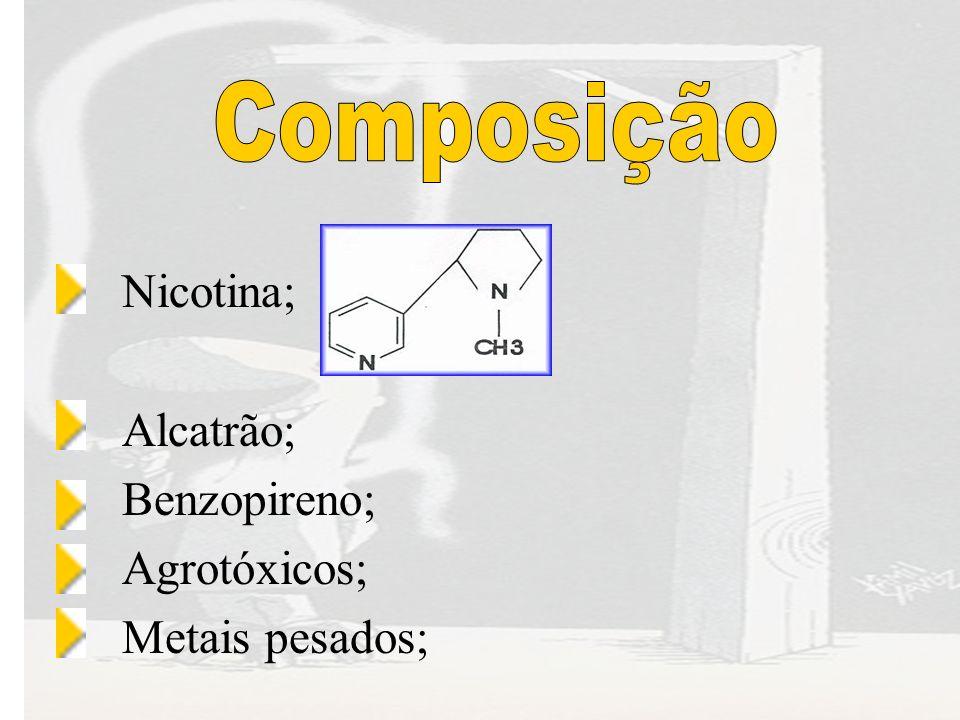 Nicotina; Alcatrão; Benzopireno; Agrotóxicos; Metais pesados;