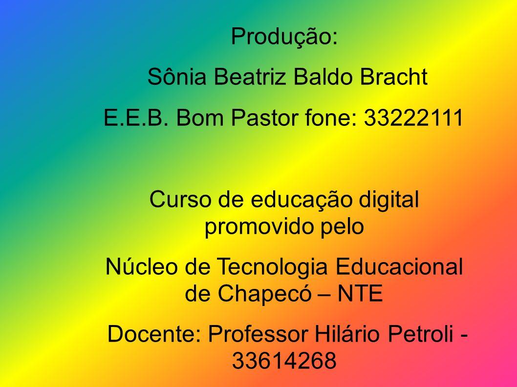 Produção: Sônia Beatriz Baldo Bracht E.E.B. Bom Pastor fone: 33222111 Curso de educação digital promovido pelo Núcleo de Tecnologia Educacional de Cha