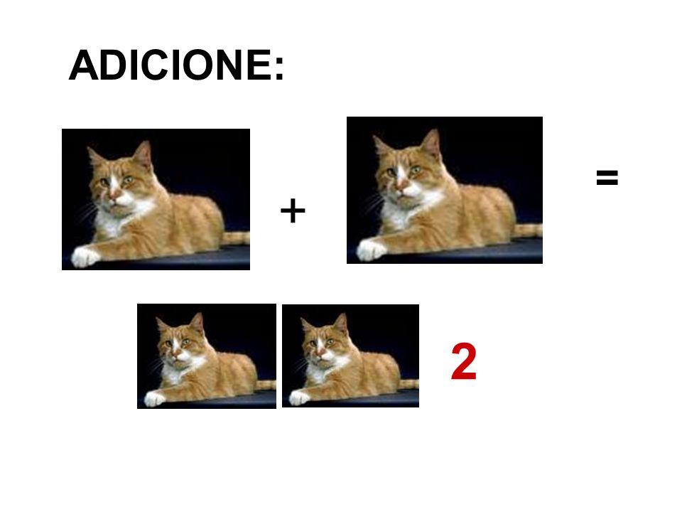 + ADICIONE: = 2