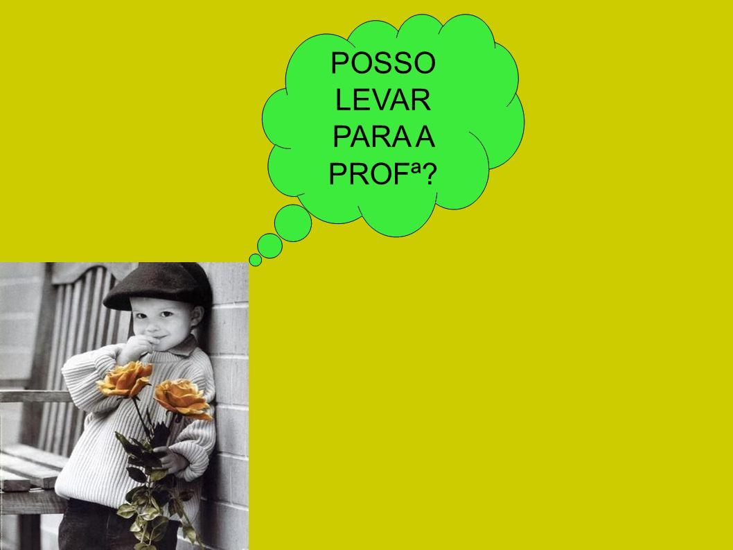 POSSO LEVAR PARA A PROFª?