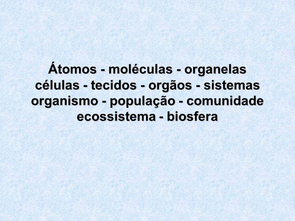 Átomos - moléculas - organelas células - tecidos - orgãos - sistemas organismo - população - comunidade ecossistema - biosfera
