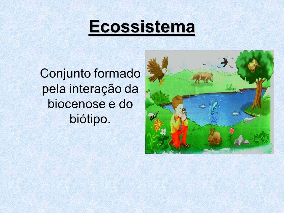 Ecossistema Conjunto formado pela interação da biocenose e do biótipo.