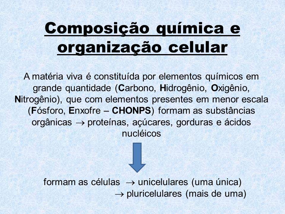 Organismo A união de todos os sistemas forma o organismo, que pode ser, por exemplo, uma pessoa.