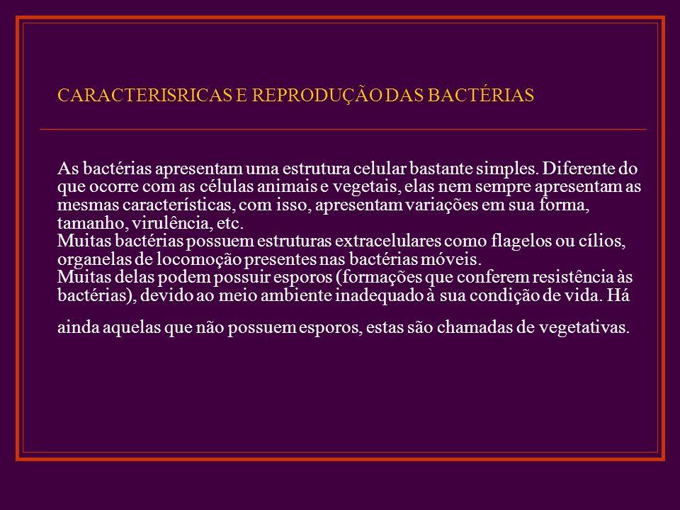 Conjugação Na conjugação bacteriana, pedaços de DNA passam diretamente de uma bactéria doadora, o macho , para uma receptora, a fêmea .