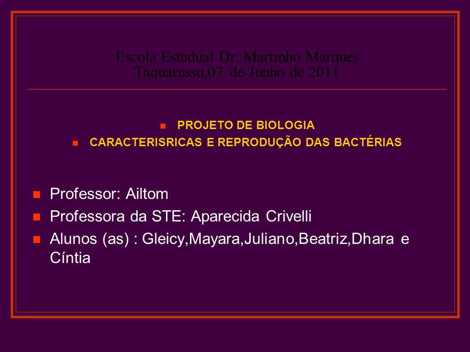 Escola Estadual Dr. Martinho Marques Taquarussu,07 de Junho de 2011 PROJETO DE BIOLOGIA CARACTERISRICAS E REPRODUÇÃO DAS BACTÉRIAS Professor: Ailtom P