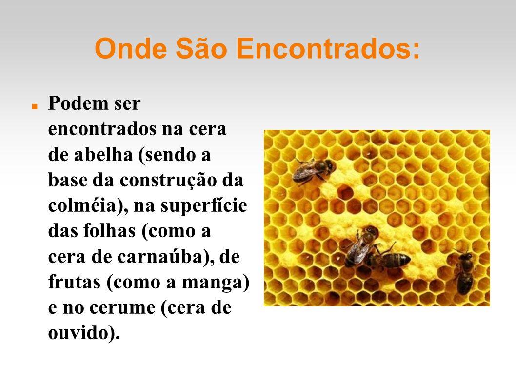Onde São Encontrados: Podem ser encontrados na cera de abelha (sendo a base da construção da colméia), na superfície das folhas (como a cera de carnaúba), de frutas (como a manga) e no cerume (cera de ouvido).