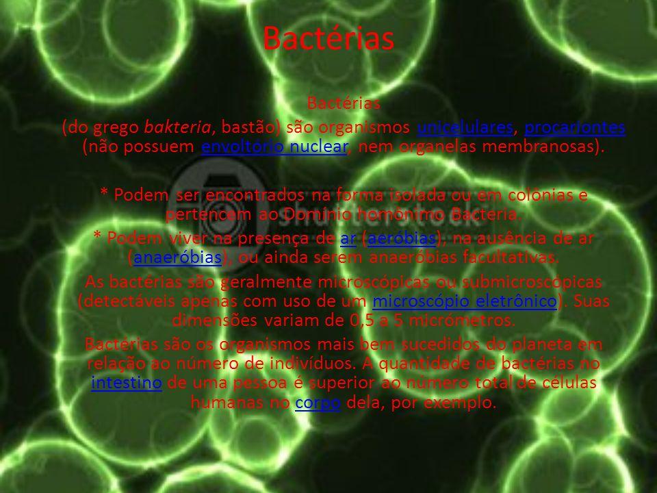 Características das bactérias As bactérias apresentam uma estrutura celular bastante simples.