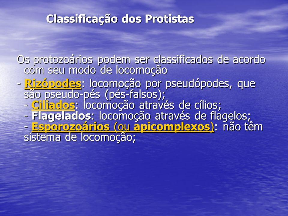 Classificação dos Protistas Classificação dos Protistas Os protozoários podem ser classificados de acordo com seu modo de locomoção Os protozoários po
