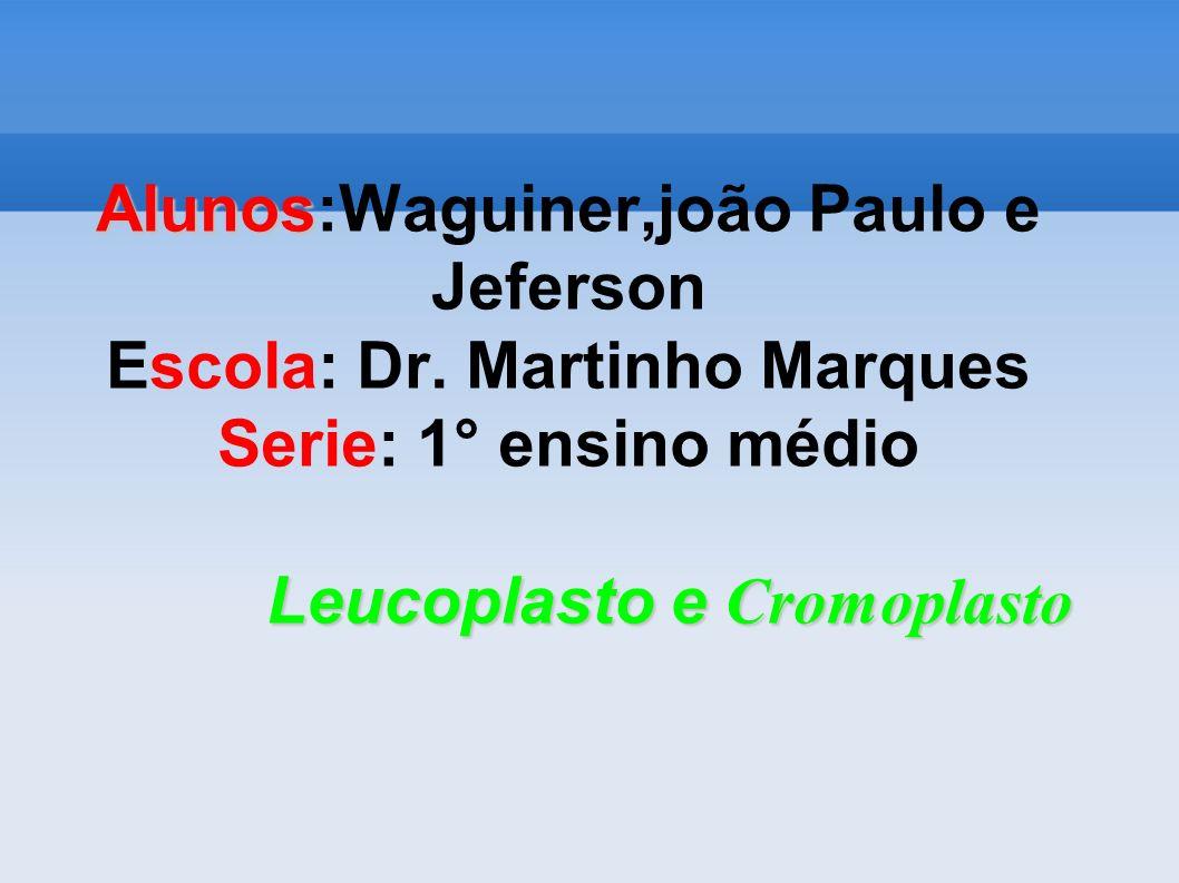 Alunos Leucoplasto e Cromoplasto Alunos:Waguiner,joão Paulo e Jeferson Escola: Dr. Martinho Marques Serie: 1° ensino médio Leucoplasto e Cromoplasto