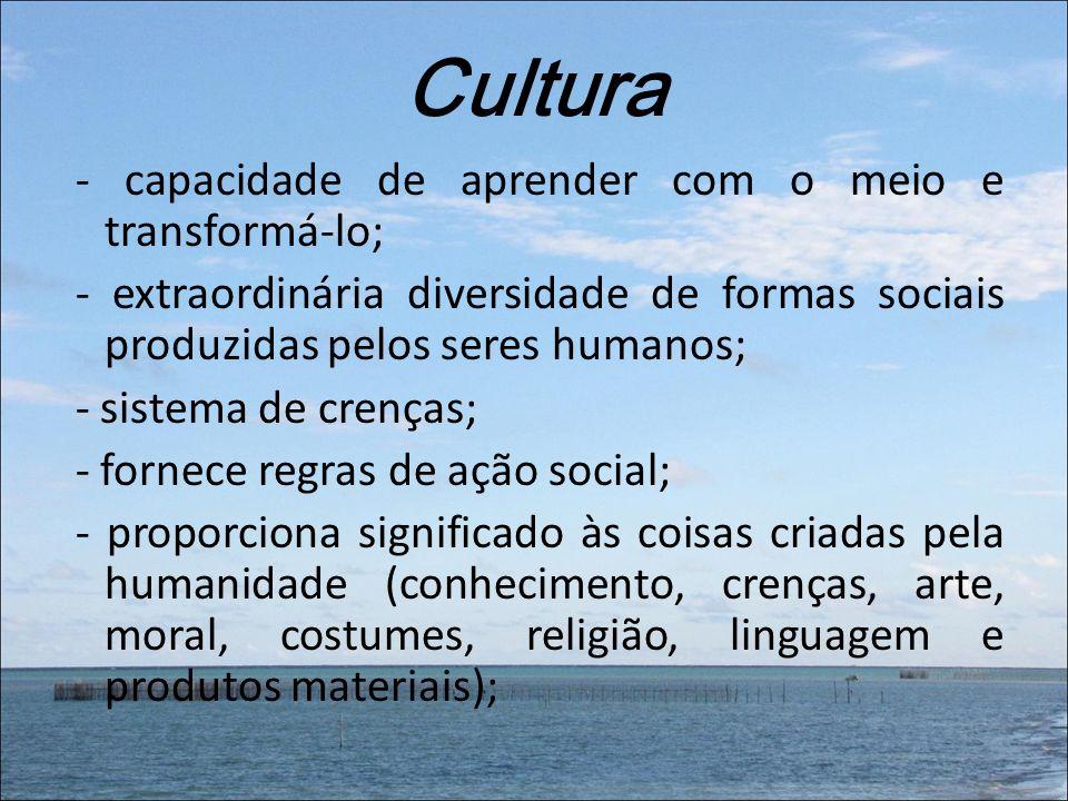 Cultura - capacidade de aprender com o meio e transformá-lo; - extraordinária diversidade de formas sociais produzidas pelos seres humanos; - sistema