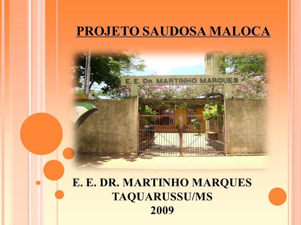 E. E. DR. MARTINHO MARQUES TAQUARUSSU/MS 2009 PROJETO SAUDOSA MALOCA