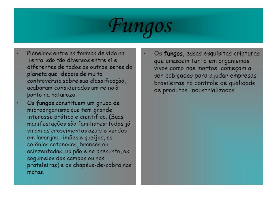 Fungos Pioneiros entre as formas de vida na Terra, são tão diversos entre si e diferentes de todos os outros seres do planeta que, depois de muita con