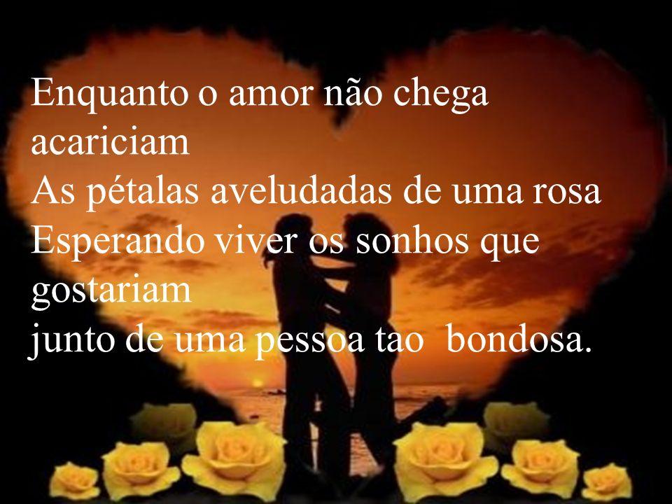 Enquanto o amor não chega acariciam As pétalas aveludadas de uma rosa Esperando viver os sonhos que gostariam junto de uma pessoa tao bondosa.