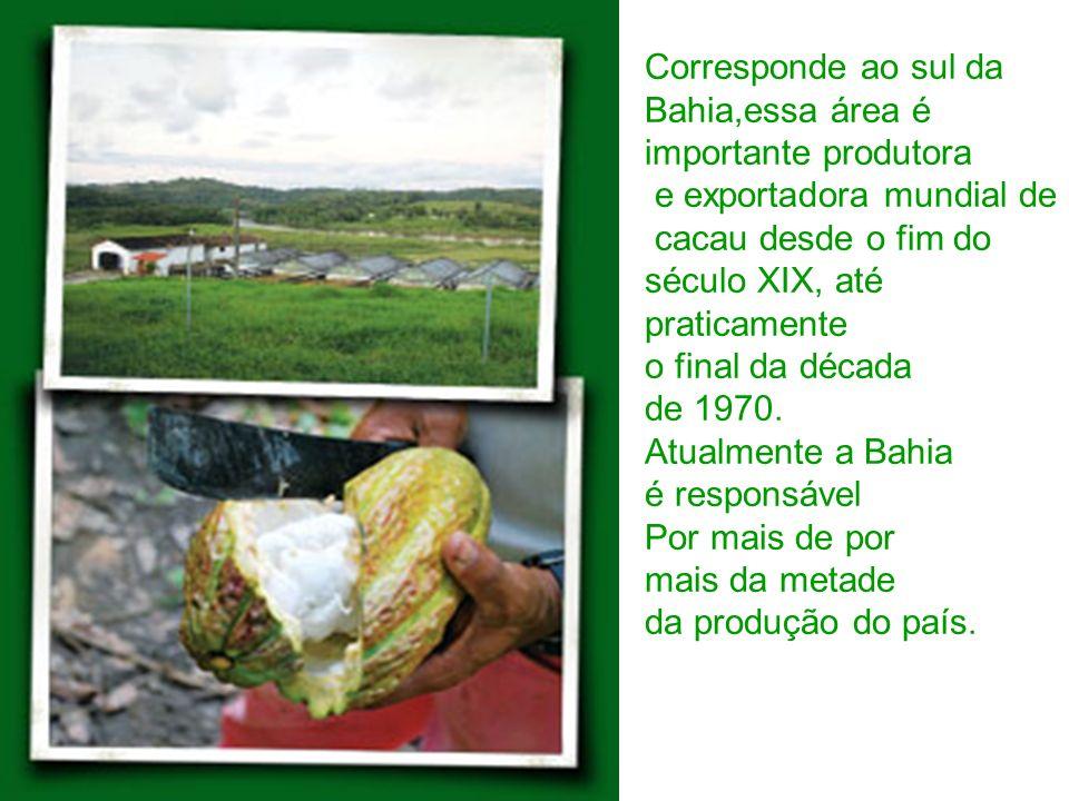 Corresponde ao sul da Bahia,essa área é importante produtora e exportadora mundial de cacau desde o fim do século XIX, até praticamente o final da déc
