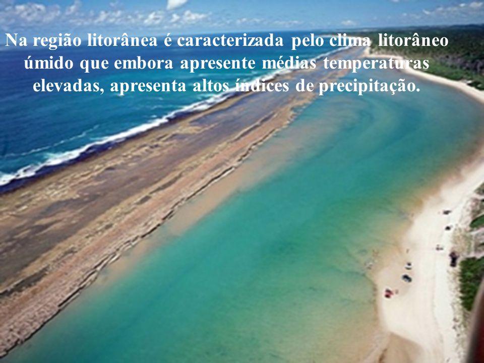 Na região litorânea é caracterizada pelo clima litorâneo úmido que embora apresente médias temperaturas elevadas, apresenta altos índices de precipita
