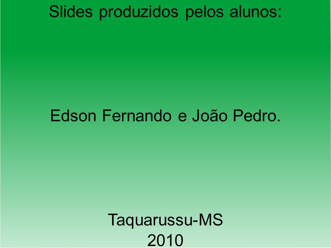 Slides produzidos pelos alunos: Edson Fernando e João Pedro. Taquarussu-MS 2010
