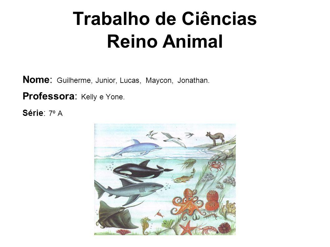 Trabalho de Ciências Reino Animal Nome: Guilherme, Junior, Lucas, Maycon, Jonathan. Professora: Kelly e Yone. Série: 7º A