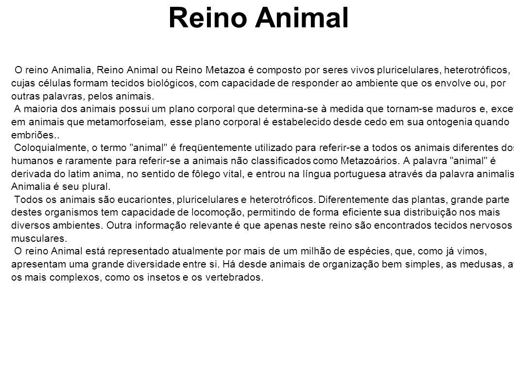 Reino Animal O reino Animalia, Reino Animal ou Reino Metazoa é composto por seres vivos pluricelulares, heterotróficos, cujas células formam tecidos b