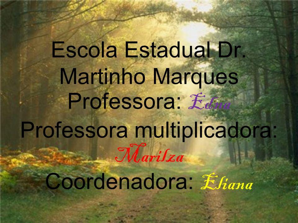 Escola Estadual Dr. Martinho Marques Professora: Edna Professora multiplicadora: Marilza Coordenadora: Eliana