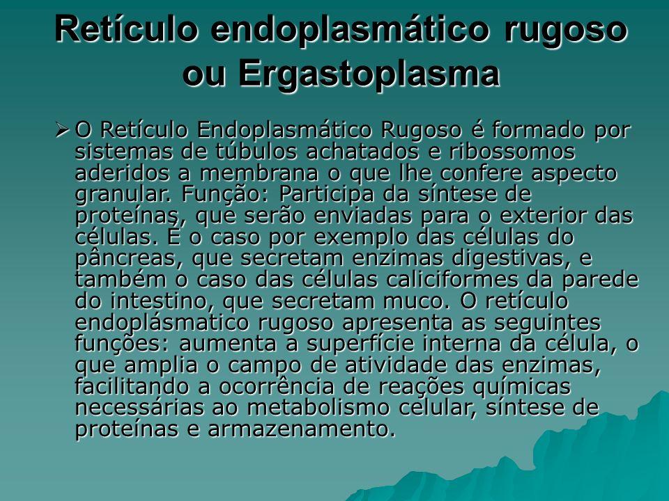 Retículo endoplasmático rugoso ou Ergastoplasma O Retículo Endoplasmático Rugoso é formado por sistemas de túbulos achatados e ribossomos aderidos a membrana o que lhe confere aspecto granular.