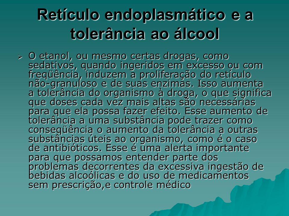 Retículo endoplasmático e a tolerância ao álcool O etanol, ou mesmo certas drogas, como sedativos, quando ingeridos em excesso ou com freqüência, induzem a proliferação do retículo não-granuloso e de suas enzimas.