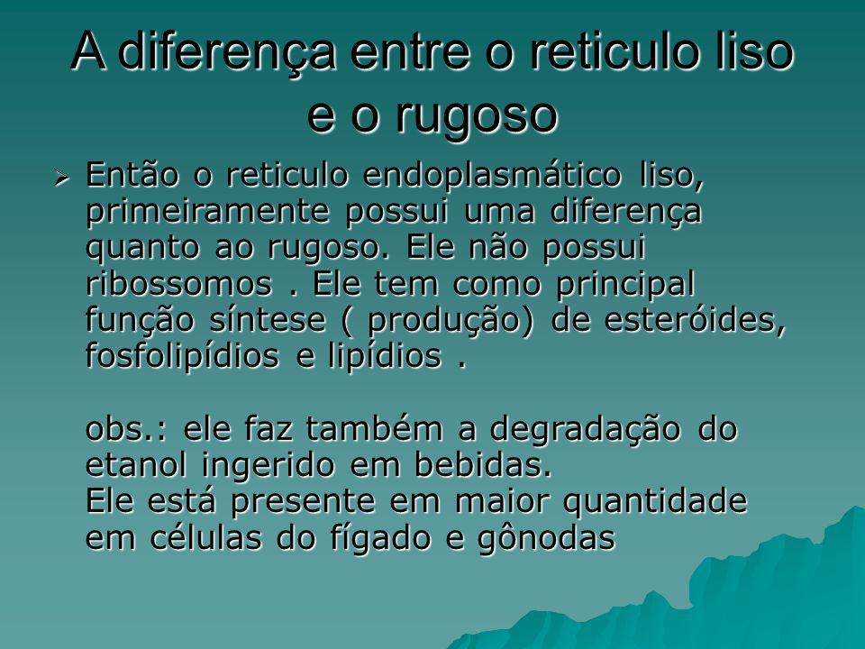 A diferença entre o reticulo liso e o rugoso Então o reticulo endoplasmático liso, primeiramente possui uma diferença quanto ao rugoso.