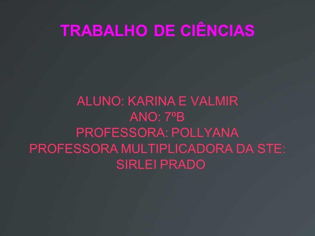 TRABALHO DE CIÊNCIAS ALUNO: KARINA E VALMIR ANO: 7ºB PROFESSORA: POLLYANA PROFESSORA MULTIPLICADORA DA STE: SIRLEI PRADO