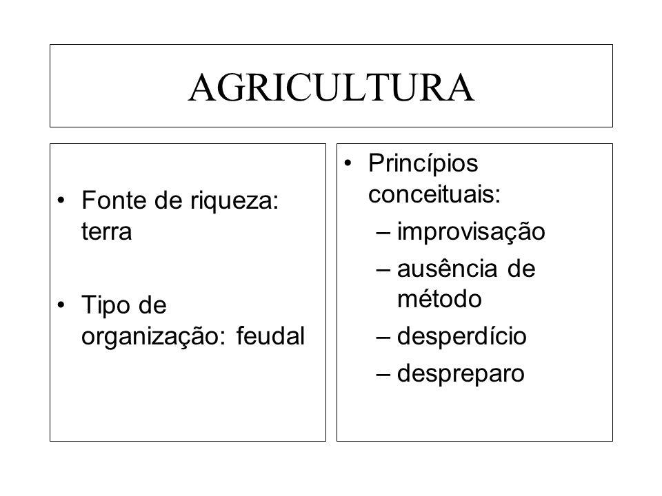 AGRICULTURA Fonte de riqueza: terra Tipo de organização: feudal Princípios conceituais: –improvisação –ausência de método –desperdício –despreparo