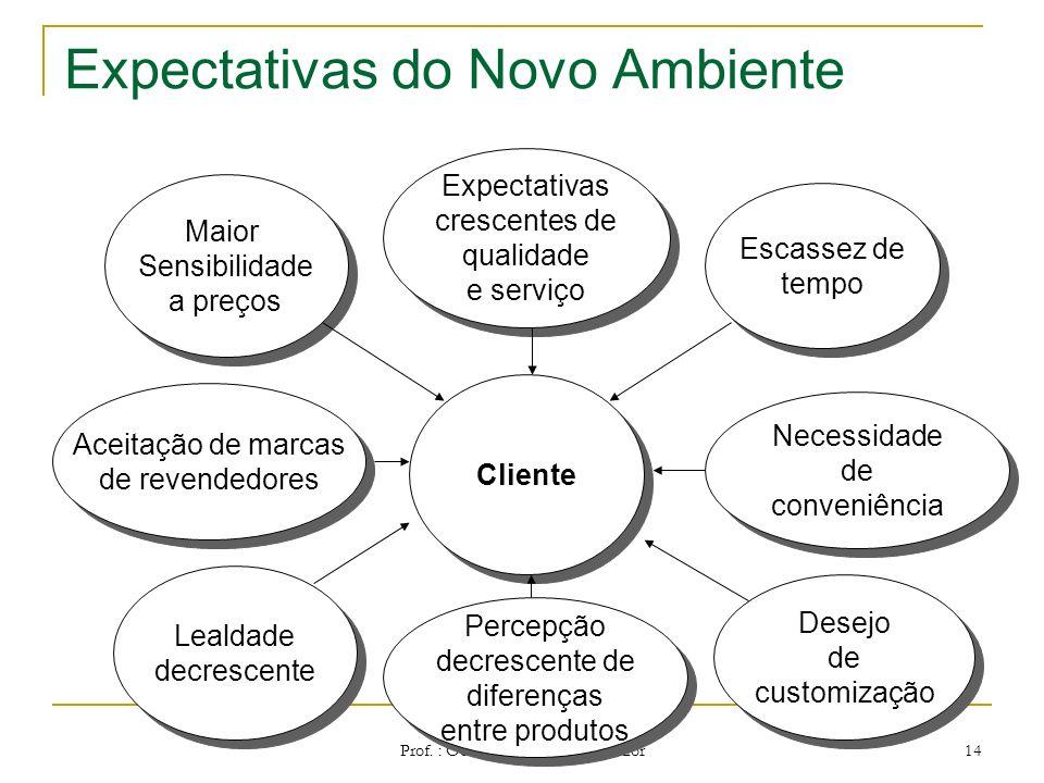 Prof. : Odair de Souza Cunha Junior 13 Desafios do Novo Ambiente Velocidade Tecnológica Agilidade negócios Velocidade Tecnológica Agilidade negócios D