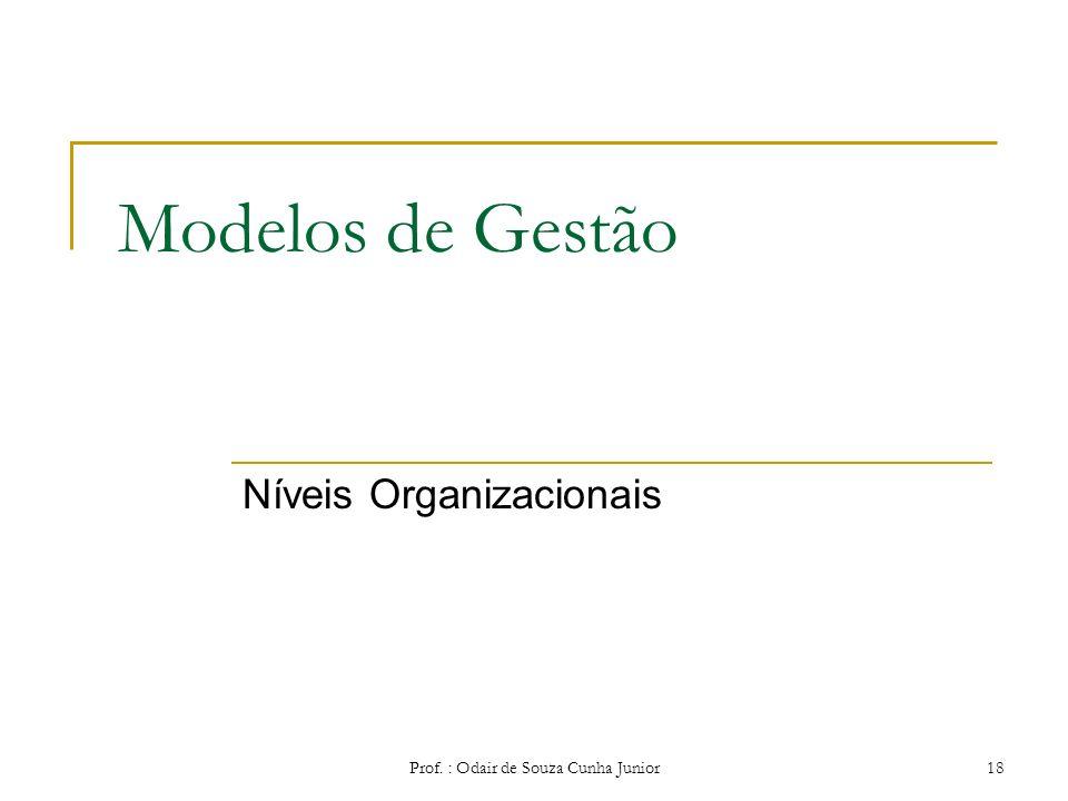 Prof. : Odair de Souza Cunha Junior17 Modelos de Gestão Visão Contemporânea